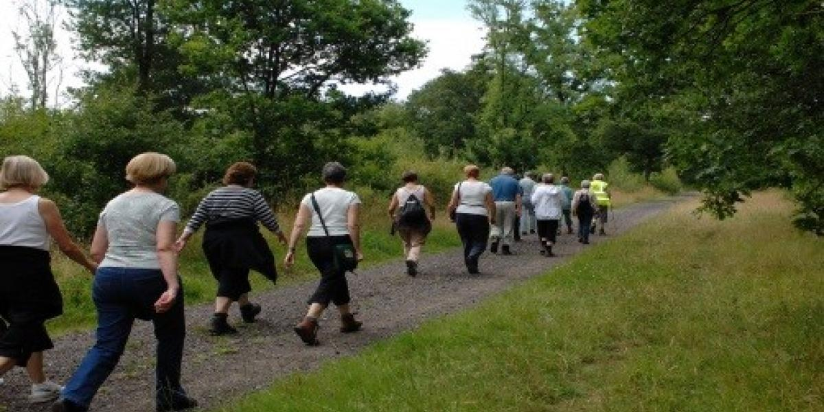 Generic walking group